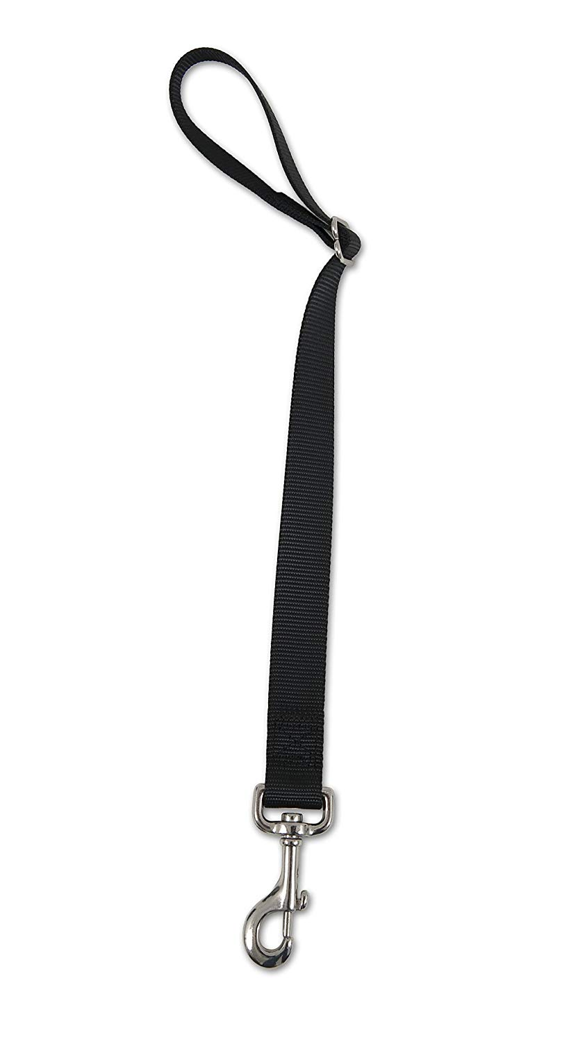 Petmate 11482 Seat Belt Loop Tether for Pets