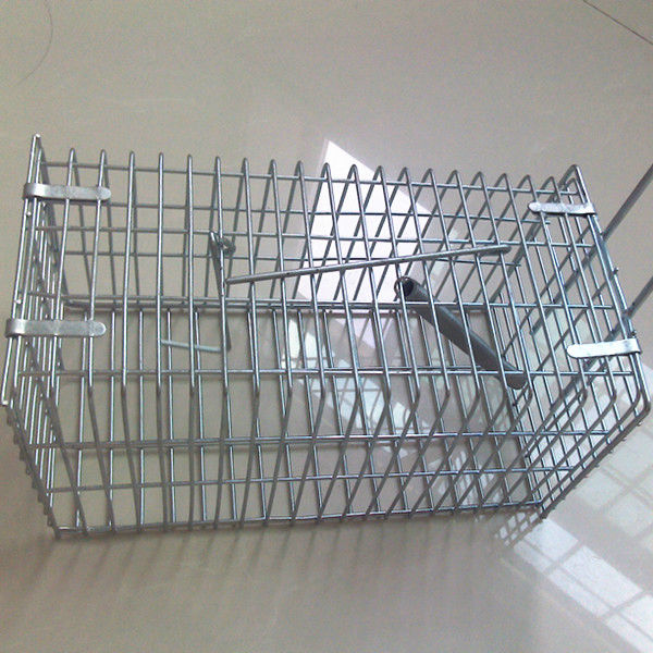 metal rat cage(professional manufacturer)
