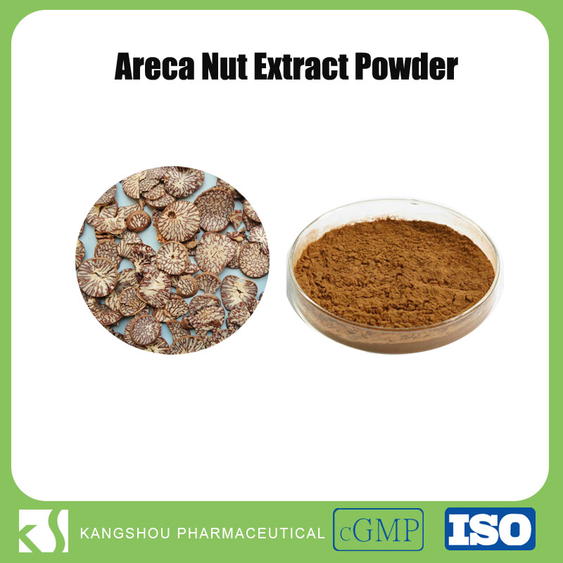 Hot sell natural areca nut extract 10:1 betel nut palm extract