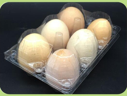 Factory price plastic egg tray on sale