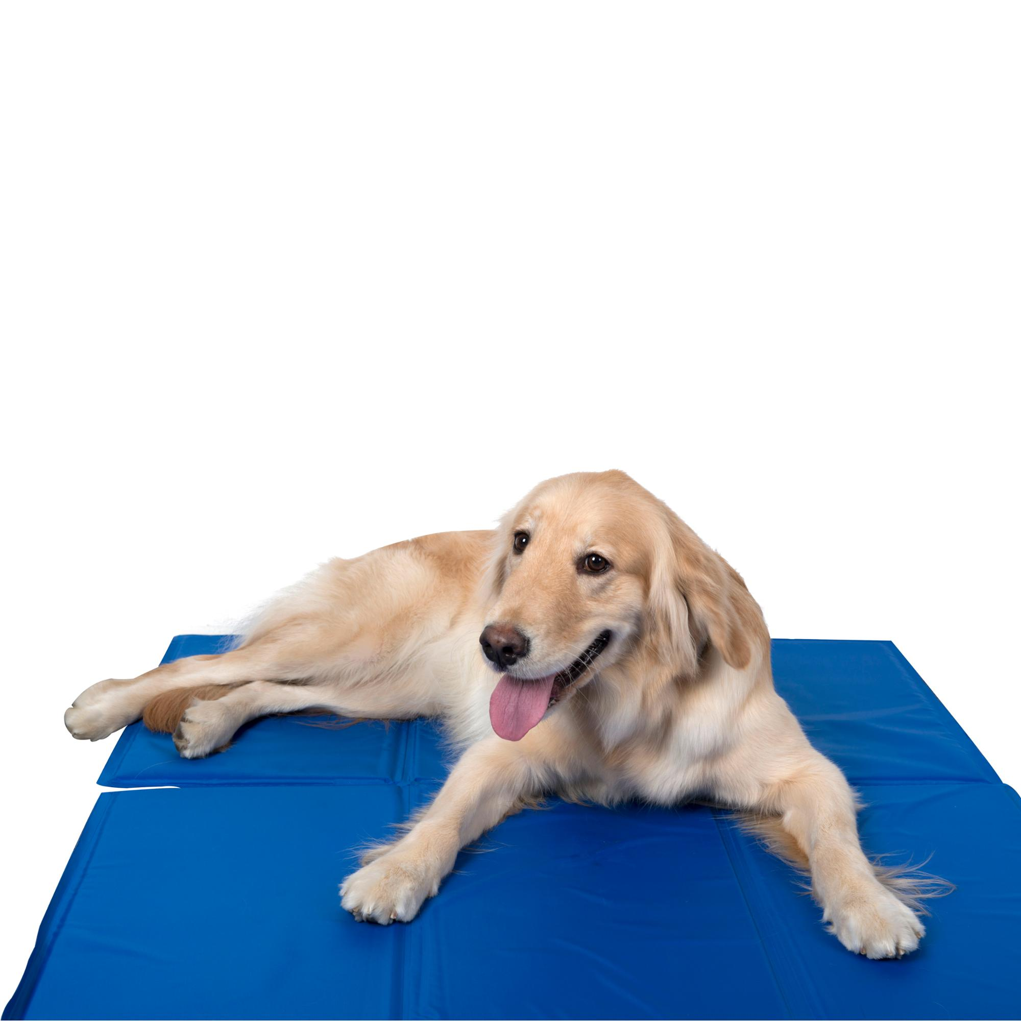 comfort xl pet gel products mats com ip in walmart for x cooling pad chillz dogs hugs