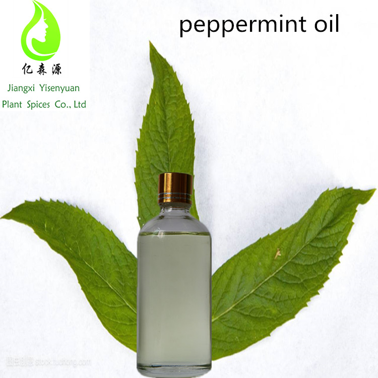 100% Pure and Organic Peppermint oil For Refreshing with best price