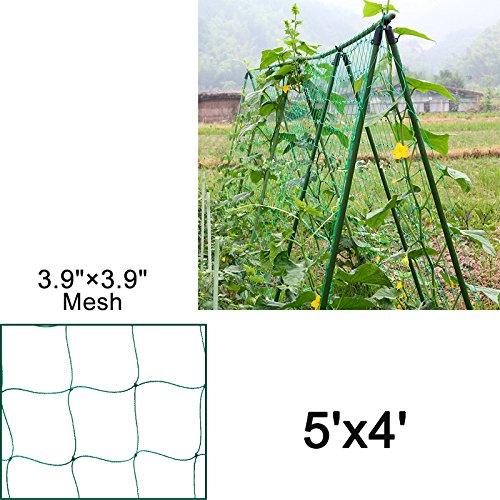 """Mr.Garden Heavy-duty PE Plant Trellis Netting Green Garden Netting 3.94""""-36 W5'xL4'"""