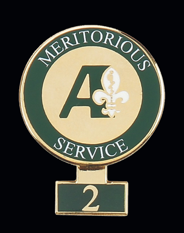 "2"" enamel 2 years service enamel lapel pin for your company"