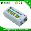 Geilienergy Rechargeable Lithium Ion Battery 9 Volt 480mAh
