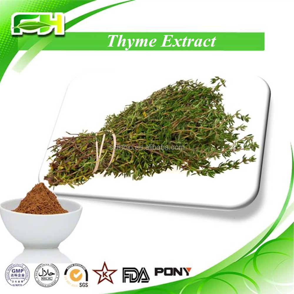 Thyme P.e.,Wild Thyme Extract Powder,Thymol 20%,30%