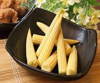 canned fresh baby corn/baby corn in glass jar rich in protein