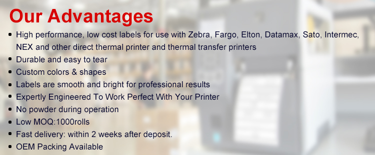 Premium quality 500 lables/roll 4''x 6'' Blank Shipping sticker direct thermal label