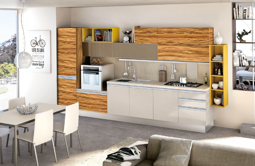 House Project Kitchen Cabinet Hydraulic Hinge Tv Cabinet Modern