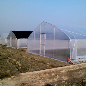 Greenhouse supplier large multi-span venlo agriculture green house