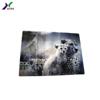 OEM fashion LED PS sheet 3D lenticular picture for advertising