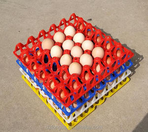30 cell plastic egg tray or plastic egg box and plastic egg carton