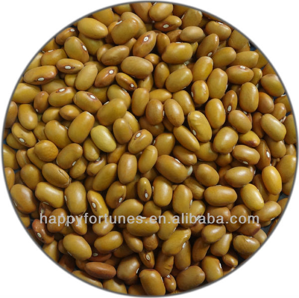 Yellow Kidney Beans Buy Types Of Kidney Beans Yellow Beans Kidney Beans Product On Alibaba Com