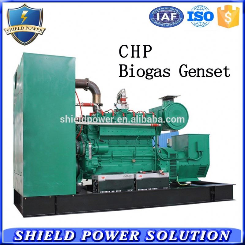 Best selling biogas natural gas generator offer