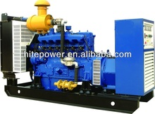 Sufficient reserve power 10kw to 500kw liquefied petroleum gas generator with advanced ignition system
