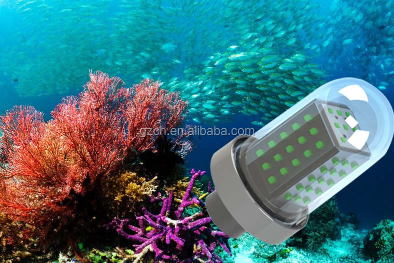 High power 10W 50W 100W 600W fish luring ip68 led underwater fishing light