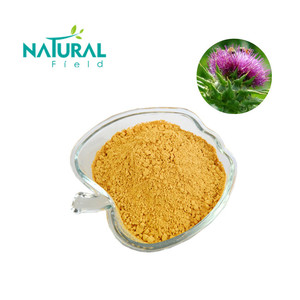 Hot-Selling Milk Thistle Extract Powder 80% in EU Market