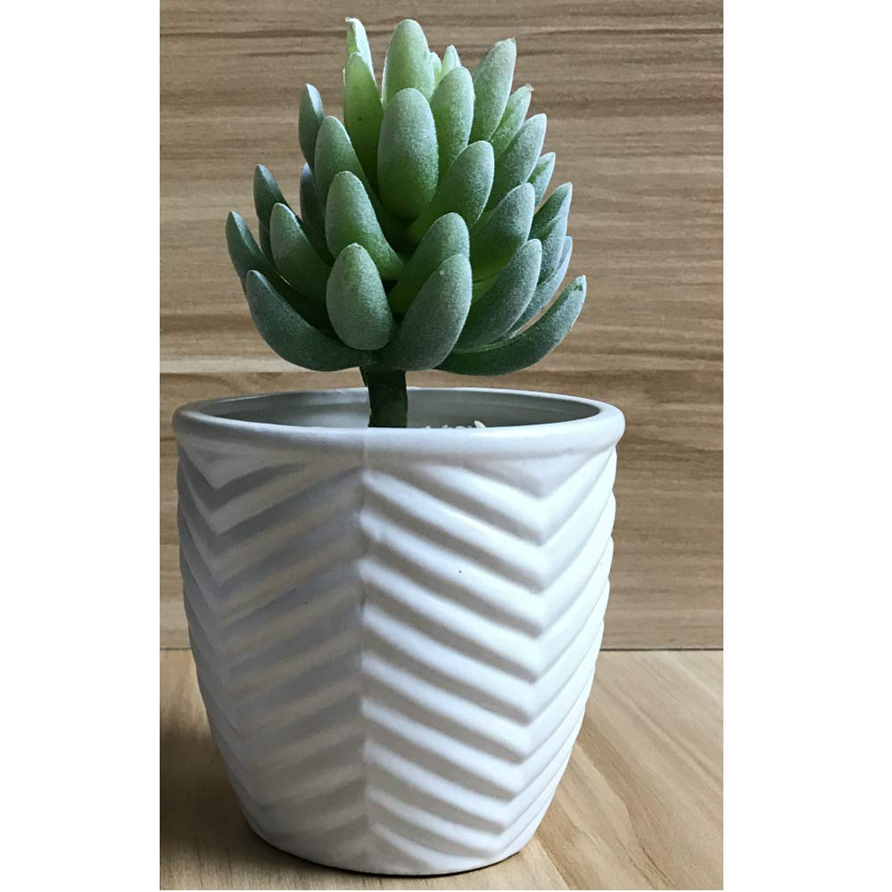 Better-way Tree Surface Design Ceramic Succulent Plant Pots Indoor Planters for Plants and Flowers Succulent Container (4.3 Inch)