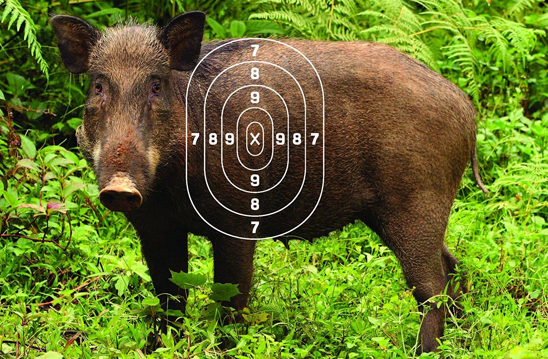 Cheap Deer 3d Targets, find Deer 3d Targets deals on line at Alibaba.com
