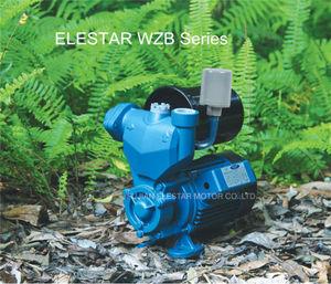 Pulsafeeder Pump, Pulsafeeder Pump Suppliers and