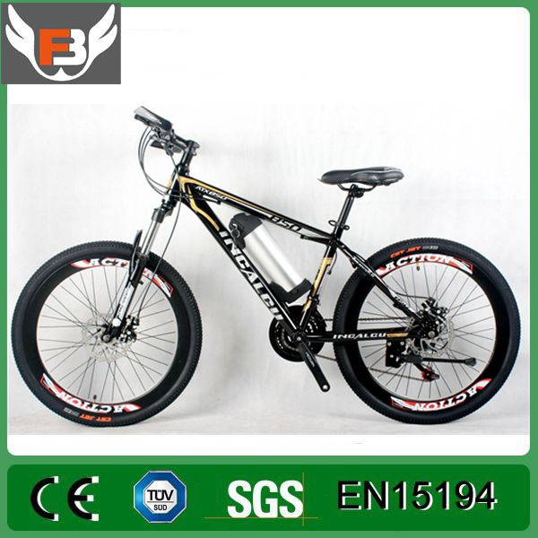 1111 Promotion 24 inch mtb frame long range battery mountain electric bike