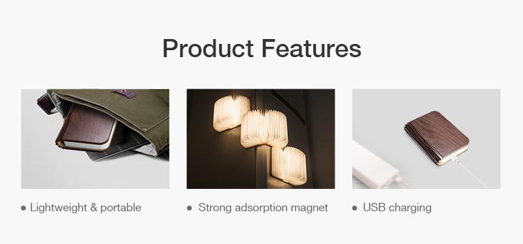 mini folding light.jpg