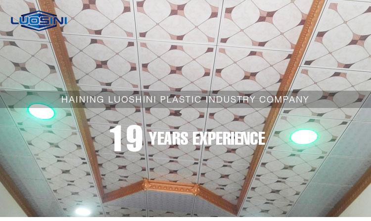 Luosini Pvc Ceiling Panel Design For Bathroom Or Kitchen Buy Pvc Ceiling Pvc Ceiling Panel In Ceiling Tiles Luosini Pvc Ceiling Panel Product On Alibaba Com,Interior Design Of Cloth Showroom In India