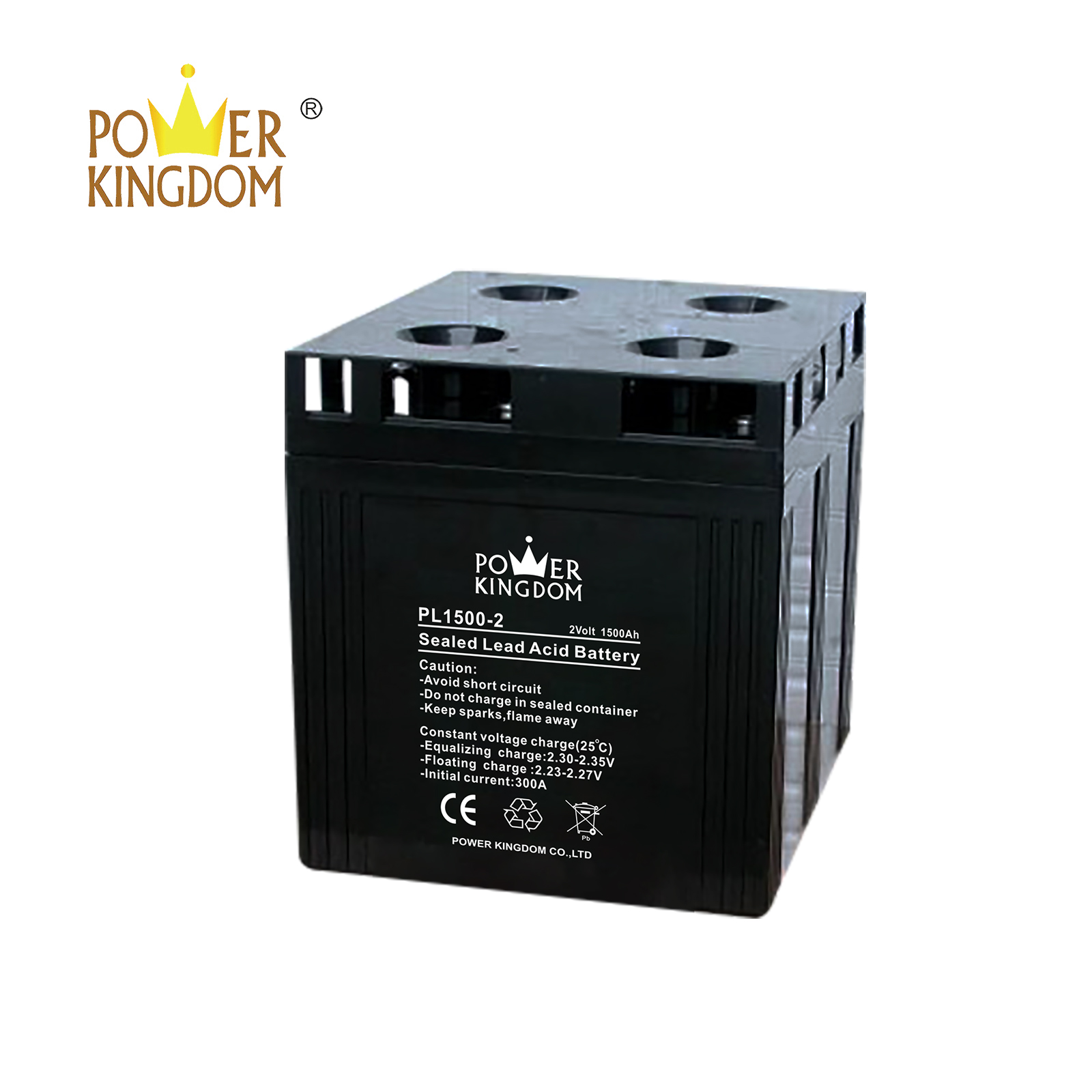 Power Kingdom good quality flooded cell battery Supply fire system