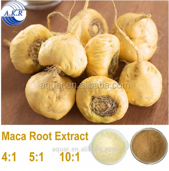 2017 men health care anti-fatigue Maca root extract 4:1 in stock