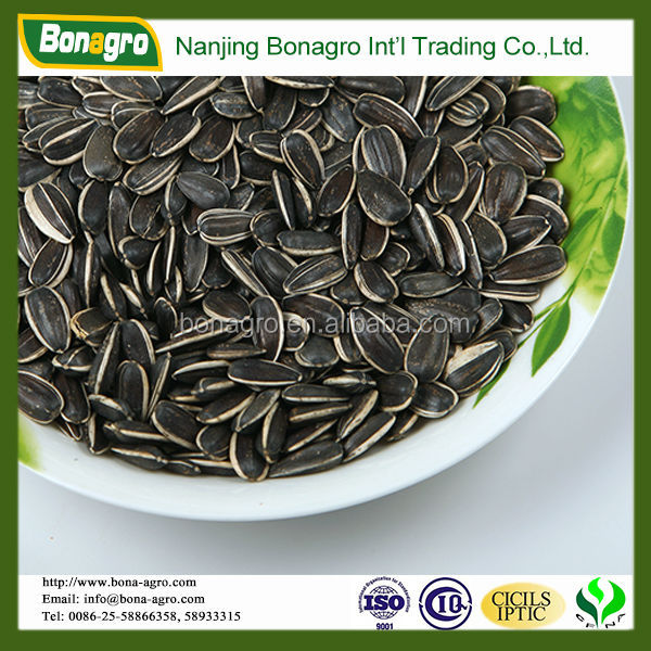 Wholesale Sunflower Seeds american type