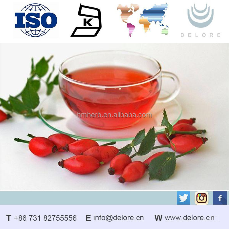 Alibaba supply good products at best price rose hip extract