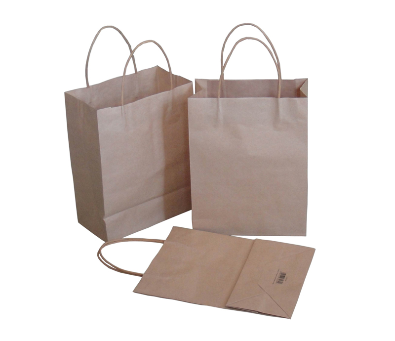 Printed Kraft Paper Shopping Packaging Carrier Gift Bags for Packing