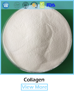 100% natural hydrolysate fish collagen