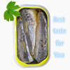canned sardine in oil from Morocco