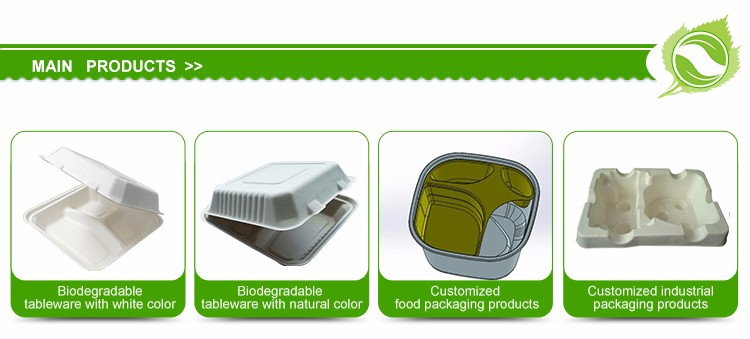 Biodegradable Disposable 3-compartment Hot Food Container