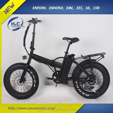 48V 11Ah LG Lithium 20inch Foldable Men Cool Electric Bikes, with Bluetooth Phone APP Ebike