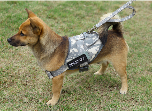 Multi-functional Harness Tactical Dog Vest for Outdoor Training or Travel