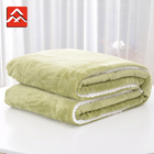 100 Polyester Super Soft Extra Thick Weighted Flannel Fleece Blanket For Sale