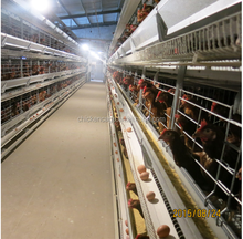 New production high quality products in China best hen house design cheap big indoor chicken coops designs enclosures for sale