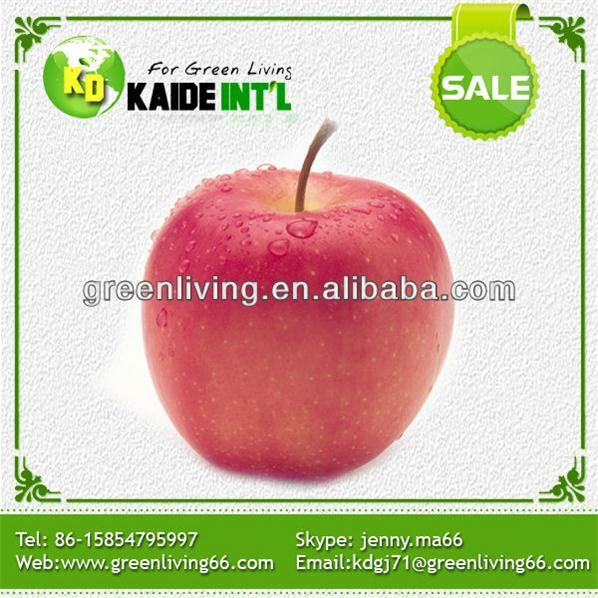 Best Price Fresh Red Fuji Apples