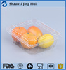 Rectangular Plastic Container for Fruit or Vegetable