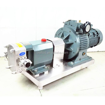 Stainless Steel Rotary Positive Displacement Pump