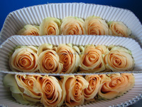 Reasonable price factory direct assorted rose flower