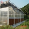 China factory PC sheet greenhouse for vegetable/fruit/garden