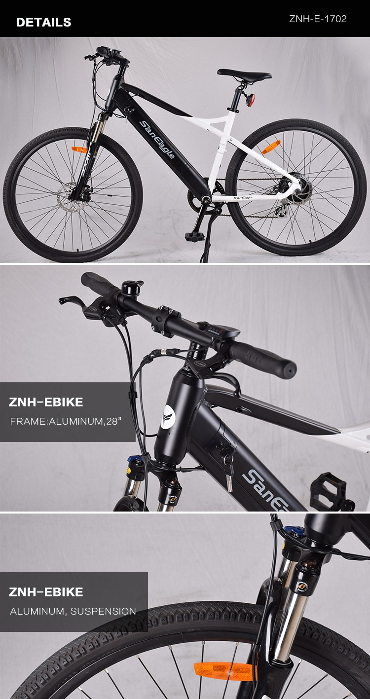 ZNH-E-1702 Saneagle electric bike