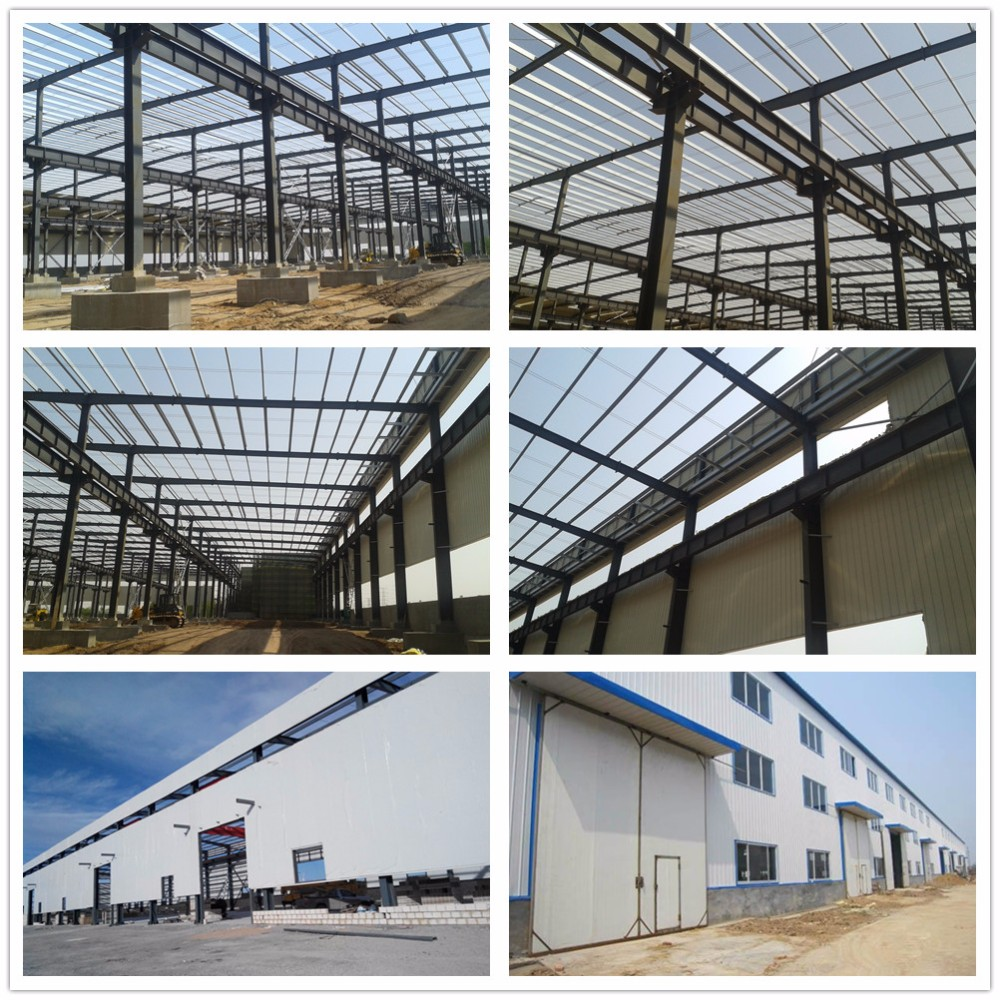 Director steel frame warehouse buildings for sale view for Steel frame barns for sale