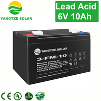 Free shipping 6 volt battery