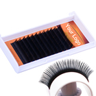 Very Soft Own Logo Deeply Black Silk Mink Eyelash Extension