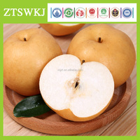ZHOUTIAN High Production Big Yellow Pears