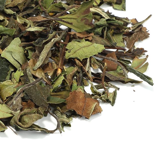Chinese Health Organic slimming Tea White Tea for Gift giving - 4uTea | 4uTea.com